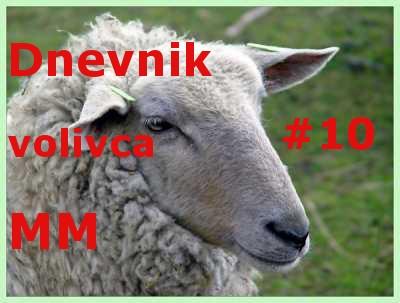 Dnevnik volivca 010 - Dnevnik volivca MM (volitve 2014) – desetič