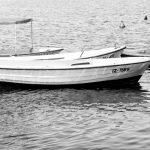 Obalni vrtičkarji